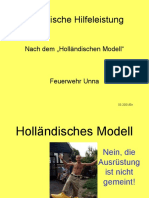 Holl_Mod