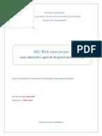 rapport SIGWEB