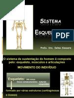2015 Sistema Esquelético Resumo