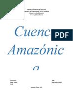 Cuenca Amazonica - Johan Viloria 5to B