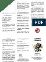 BOLETIN-No-34-RIESGO-PUBLICO