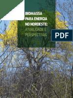 Biomassa no nordeste- atualidade e perspectivas