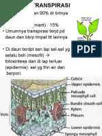 TRANSPIRASI (2)