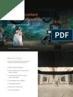 Disguise Cluster Rendering eBook