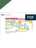 Malla Publicada Salud Integrativa Correcta 2011