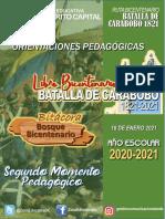 Orientacones LIBRO BICENTENARIO - BITACORA