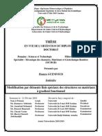 GUENFOUD HAMZA DOCTORAT 21022019