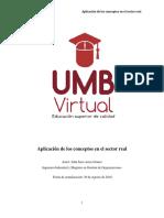 2.1 Texto Guía Aplicación de los Conceptos en el Sector Real