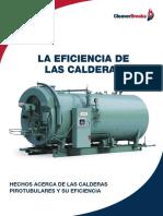 CB-7767 Efficiency Guide 11-15_Spanish