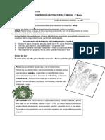 5°-Básico-Lenguaje-Guía-de-comprensión-Mito-de-Perseo-y-Medusa