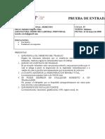 PRUEBA DE ENTRADA
