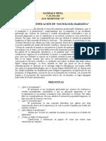 analisis 2 linguistica