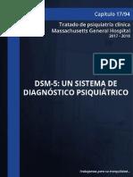 17.-DSM