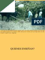 Cultura Educativa de La Comunidad Andina