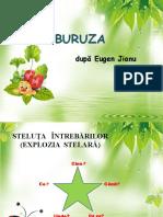buburuza_de_eugen_jianu