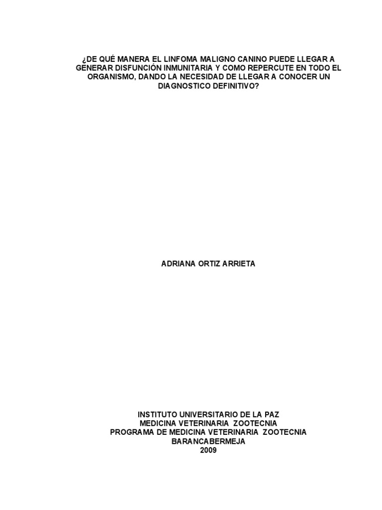 LINFOMA CANINO MALIGNO 2 KORTE