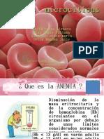 Expo anemia microcitica