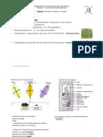 Introduction  Mycologie