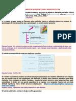 PROVA - FUNDAMENTOS NEUROFISIOLOGIA E NEUROPSICOLOGIA