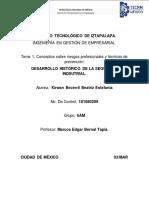 DESARROLLO HISTÓRICO DE LA SEGURIDAD INDSUTRIAL.