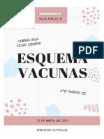 ESQUEMA VACUNAS
