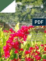 Fecomercio Em Revista 16