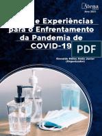 Artigo Covid Py Publicado Revista