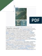 Deforestación sintesis