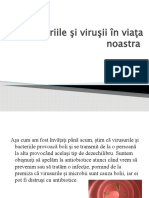 Bacteriile şi viruşii în viaţa noastra
