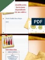 Roca_Presentació_Informe_Práctica13_NRC3632.docx