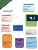Mapa_De_Ideas_Elizabeth_Quintero (4)