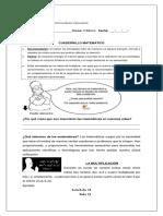 Cuadernillo Complementario 5 básico Matemáticas