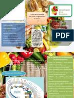 330589906 Folleto Alimentacion Saludable