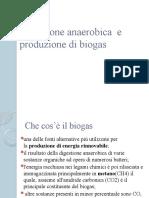 digestione-anaerobica-e-produzione-di-biogas