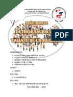 PRACTICA NRO11 300