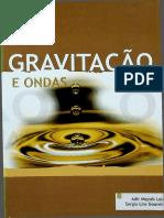 Adir Moysés - Gravitação e Ondas