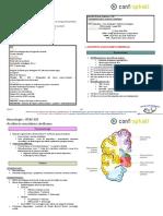 Accidents_vasculaires_cerebraux -  LeTresorDesMedecins