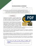 6°-básico-Ciencias-Naturales-Guía-7-Catalina-Bahamondes (1)