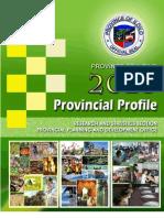 Iloilo Provincial Profile 2010