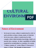 Cultural Invironment