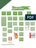 Mapa conceptual de nefropatía diabética