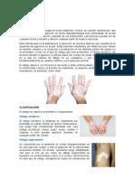 Informe - Trastornos pigmentarios