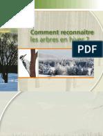 Comment-reconnaitre-les-arbres-en-hiver