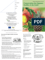 Conservation des légumes feuilles et des fruits