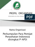 PROFIL  ORGANISASI P-AP3I