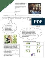 Scheda - Genetica Mendel 2