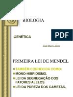 Primeira lei de Mendel 2-convertido