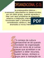 Slides Treinamento Cultura Organizacional