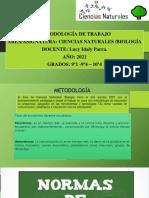 METODOLOGÍA CIENCIAS NATURALES ...