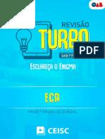 ECA -  REVISAO TURBO
